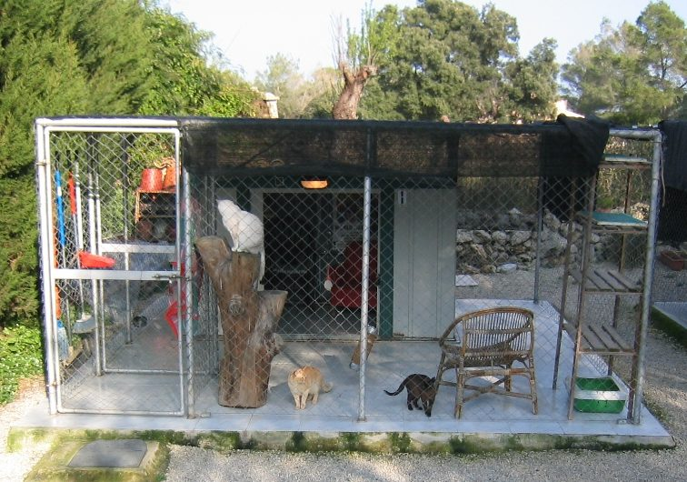 Cattery with Beautiful Accommodation for Sale
